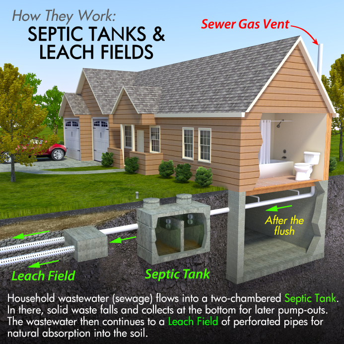 What Role Does The Drain Field Play In Your Septic System